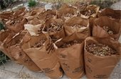 Pickup schedule for leaf bags extended through Jan. 31
